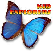 藍蝴蝶(版權所有的照片)