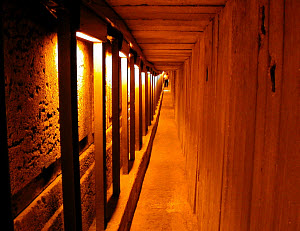 Jerusalem Temple Mount, Western wall tunnel. Photo copyright, BiblePlaces.