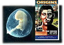 The Origin of Life, video from Films for Christ. Copyright, Films for Christ.