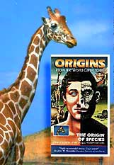 The Origin of Species, video from Films for Christ. Copyright, Films for Christ.