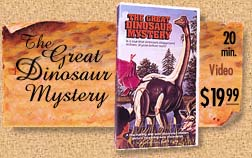 The Great Dinosaur Mystery DVD