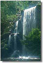 Waterfall. Photo copyrighted.