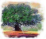 Árbol. Copyrighted.