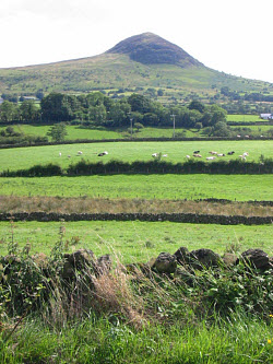 County Antrim, Ireland with Slemish mountain in background.
