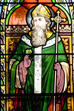 St. Patrick. Photo copyrighted.