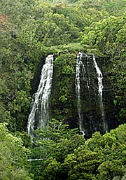 Rain forest waterfalls. Photo by Paul S. Taylor. Copyrighted.
