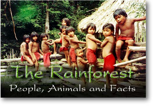 People of the Rainforest. Photo from the Amazon region of Brazil. Copyrighted.
