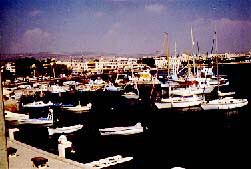 Harbor at Paphos, Cyprus. Photo copyrighted.