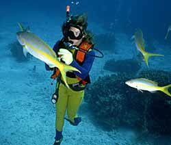 Salt water fish and diver (photo copyrighted) (Courtesy of Films for Christ.