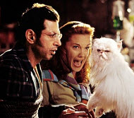 "Jeff Goldblum and Elizabeth Perkins in ""Cats and Dogs"""