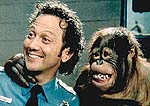 "Rob Schneider in ""The Animal"""
