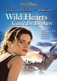 Wild at heart christian book review