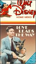 Cover Graphic from Love Leads the Way